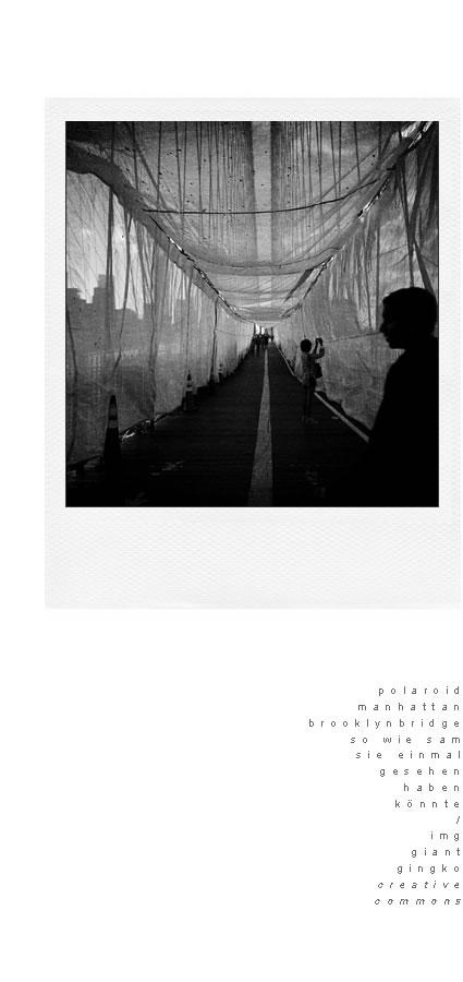 polaroidbridge